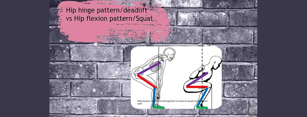 Hip Structure and Function – Online Course